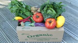 GWG veg box