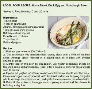 Hosta duck egg bake