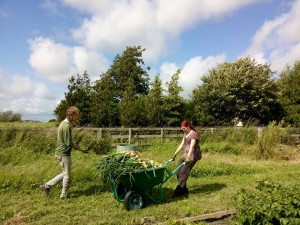 Let's talk about farmer wellbeing