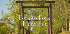 Fork to fork video photo