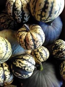 Lancaster's Harvest Market