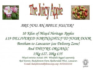 The Juicy Apple
